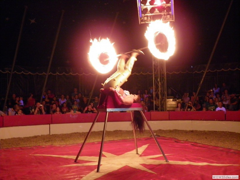 Circus Safari in Split